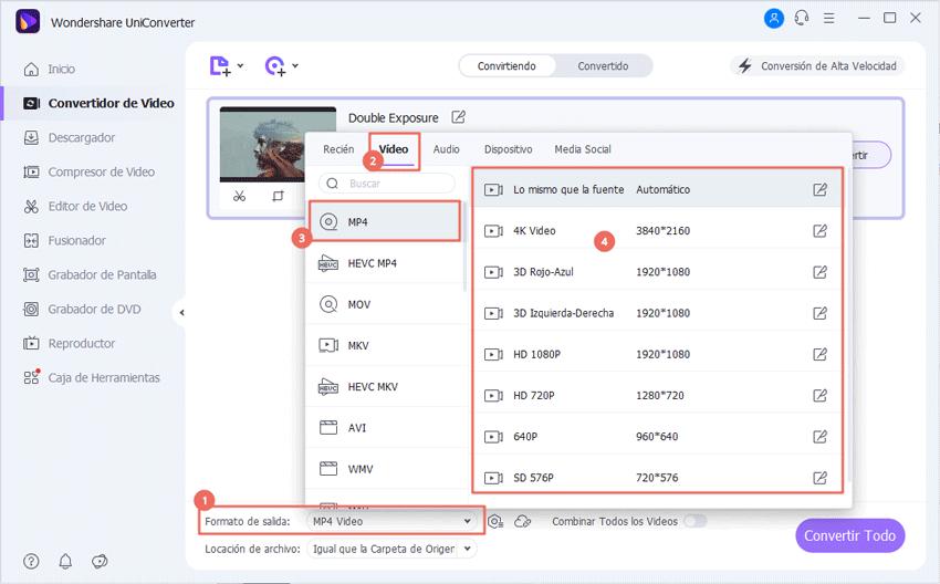 seleccionar formato de salida para videos avi